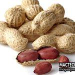 Những tác hại của đậu phộng – không phải ai ăn cũng tốt