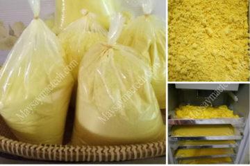 Tìm hiểu về cách sấy tinh bột nghệ cho chất lượng cao, màu sắc đẹp