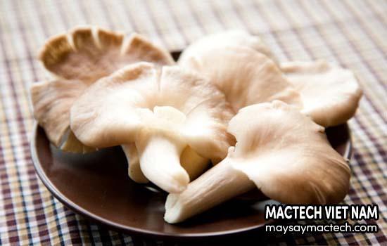 Thành phần dinh dưỡng có trong nấm sò