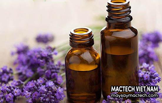 Hoa oải hương sấy khô dùng làm tinh dầu
