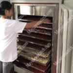 Nhiệt độ sấy hạt các loại, hướng dẫn sấy khô chín hạt từ Mactech