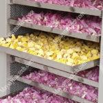 Cách sấy khô đài sen nhằm giữ nguyên hình dạng và màu sắc tự nhiên