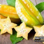 Tác dụng của quả khế, ăn khế chua có tác dụng gì