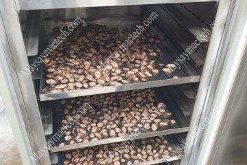 Cách sấy khô chuối hột thông dụng mang đến chất lượng cao, khô nhanh