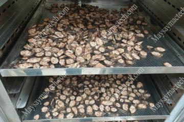 Máy sấy chuối hột phù hợp quy mô 10-50-100kg, sấy nhanh, màu đẹp