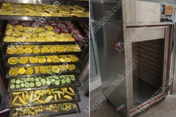 Máy sấy hoa quả 10 khay, phù hợp cho sấy dưới 50kg sản phẩm