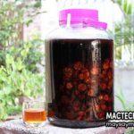 Tác hại của rượu chuối hột rừng, chú ý sử dụng đúng cách