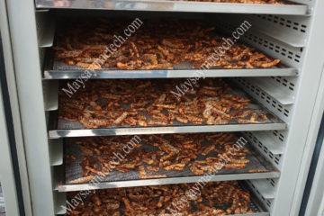 Máy sấy 10 khay phù hợp cho sấy dưới 50kg sản phẩm các loại