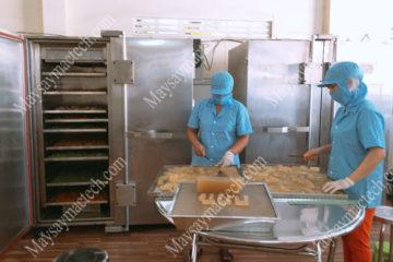 Máy sấy công nghiệp thực phẩm, thiết bị phù hợp cho sản xuất tư nhân