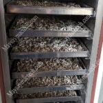 Máy sấy 5 tầng, một số mẫu máy sấy thực phẩm, rau củ phù hợp