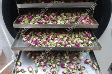 Nụ hoa hồng sấy khô giữ nguyên hình dạng, màu sắc bằng sấy thăng hoa