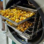 Dịch vụ sấy hoa trà vàng, đáp ứng sấy khô dưới 10kg nguyên liệu