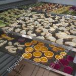 Cấu tạo máy sấy hoa quả, thông tin quan trọng để Khách hàng tìm hiểu