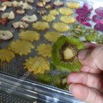 Sấy khô kiwi bằng máy sấy nào cho hiệu quả cao, sản phẩm đẹp