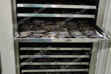 Máy sấy hải sâm, phương pháp sấy phù hợp để có chất lượng tốt
