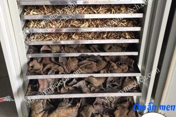 Cách sấy khô thảo dược có chất lượng tốt, lựa chọn thiết bị phù hợp