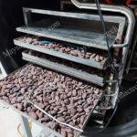 Sấy khô hạt cacao như nào để có hương vị tốt, chất lượng cao
