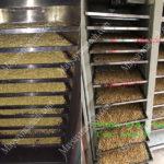 Nên sấy chín giòn hay rang hạt ngũ cốc, ưu điểm từng cách sấy