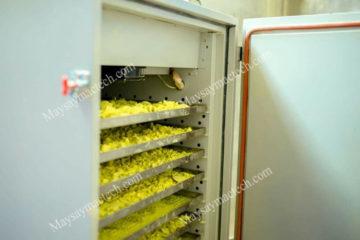 Máy sấy dược liệu giá rẻ, tham khảo máy sấy phù hợp tại Mactech