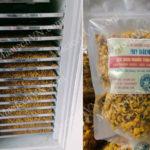 Cách sấy khô hoa cúc vàng có màu đẹp, sấy nhanh, hiệu quả