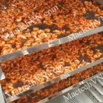 Máy sấy tôm gia đình, phù hợp sấy 10kg, 20kg tôm, tép, hải sản